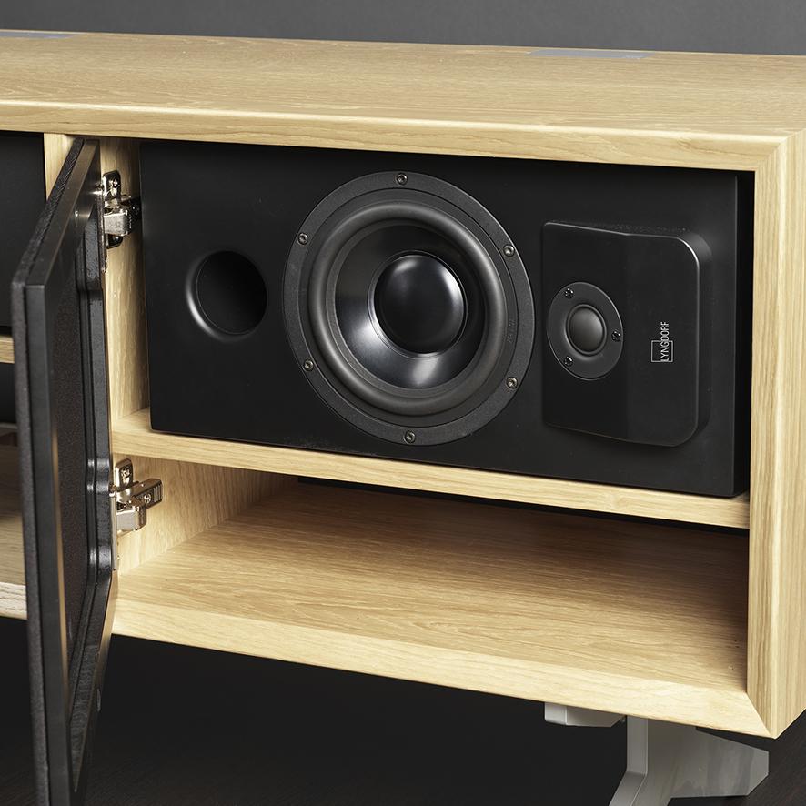 CS-1 speaker